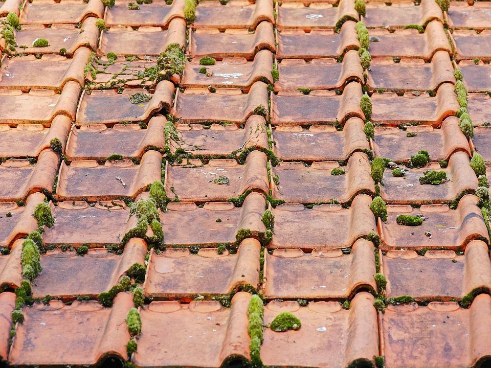 démoussage toiture landes le houga cazeres-sur-adour tuiles traitement